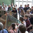 Sremsku Mitrovicu posetilo je 250 arheologa, učesnika24. LIMES kongresa, koji se po prvi put održava u Beogradu i Viminacijumu od 2. do 9. septembra. Svetski priznati arheolozi su u okviru […]