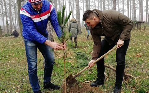 """U Rumi se nastavlja akcija """" Za zeleniju Vojvodinu"""". Na izletištu Borkovac juče i danas posađeno je oko 300 sadnica crnog bora. Ukupan broj sadnica pristiglih iz Pokrajinskog sekretarijata za […]"""