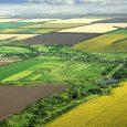 U slučaju obavljanja neophodnih poslova iz oblasti stočarstva tokom perioda zabrane kretanja, svaki poljoprivredni proizvođač je dužan da podnese zahtev za odobrenje kretanja Sektoru za poljoprivrednu inspekciju. Internet adresa za […]