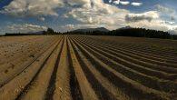 Udruženje poljoprivrednih proizvođača Opštine Pećinci u saradnji sa Poljoprivrednom stručnom službom Sremska Mitrovica i ove godine organizuje besplatnu kontrolu plodnosti zemljišta za registrovana poljoprivredna gazdinstva sa teritorije pećinačke opštine. Udruženje […]