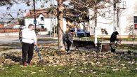 Ovih dana nesvakidašnji prizor u Donjem Tovarniku. Meštanima koji su čistili park u centru ovog sremskog naselja u Opštini Pećinci pridružio se i popularni Miki Đuričić iz Kupinova, TV lice […]